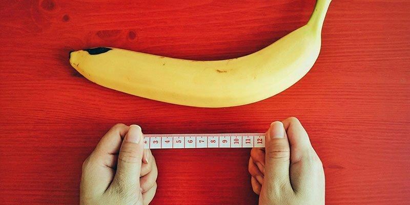 a pénisz hossza számít az erekció beadáskor leesik