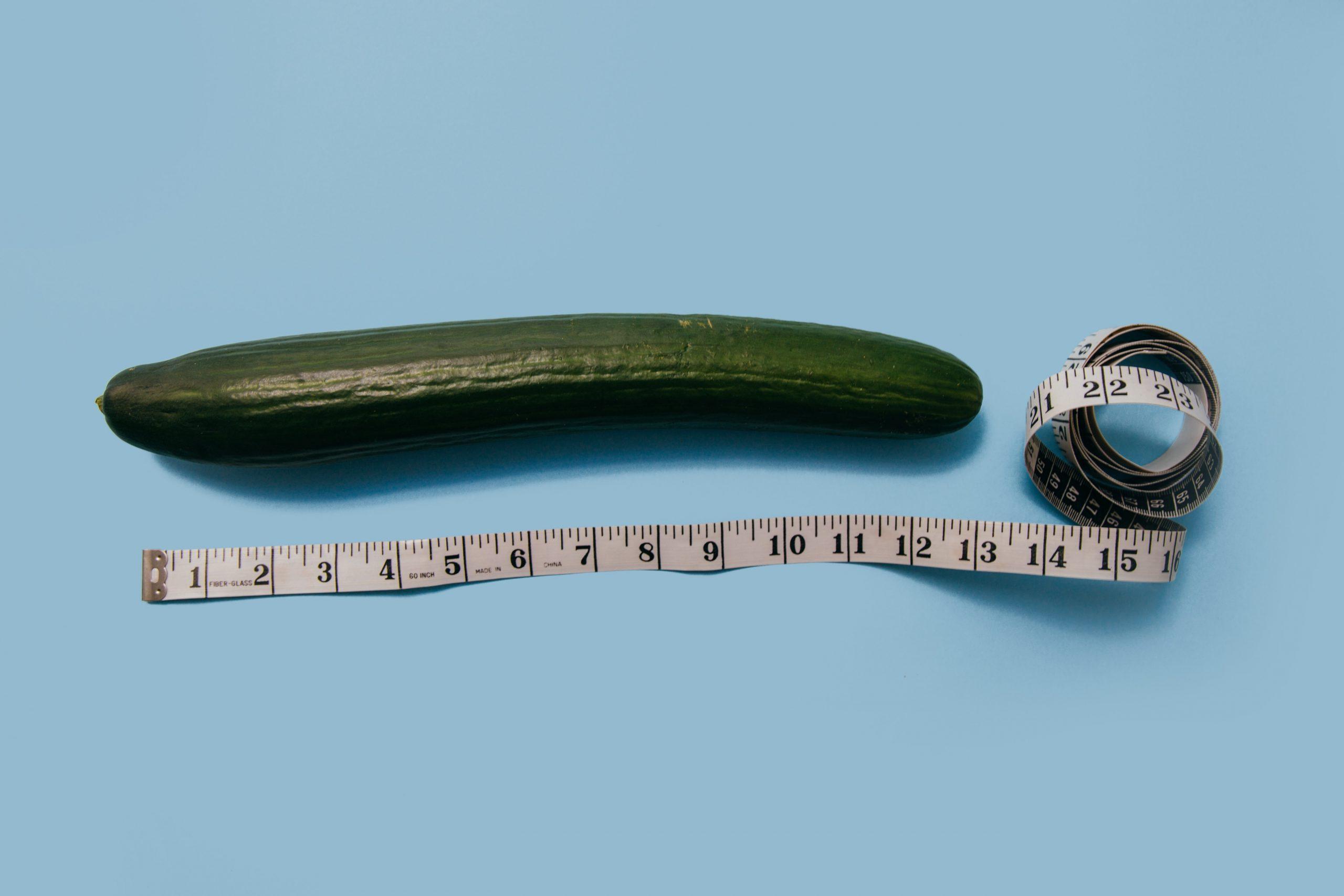 mekkora a pénisz optimális hossza