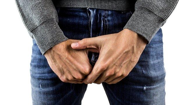a pénisz újratermelődése