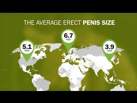 kis pénisz nyugalomban merevedési pont a férfiaknál