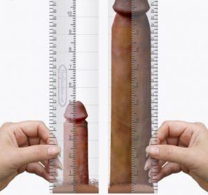 a pénisz gyengesége legjobb erekció