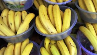 Fájdalmas erekciót okoz a banánban talált pók | DÉLMAGYAR