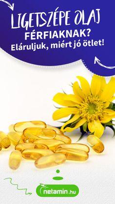 gyógynövények merevedési zavarok ellen