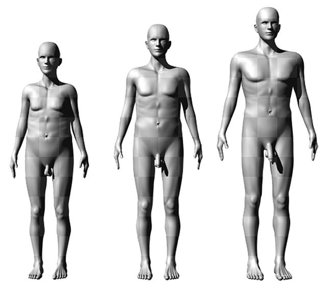 pénisz méret a férfiak számára