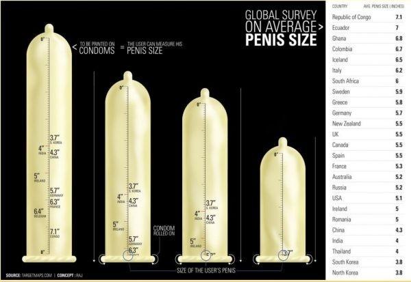 pénisz mérete merevedés nélkül
