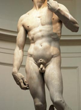 férfi fasz erekció