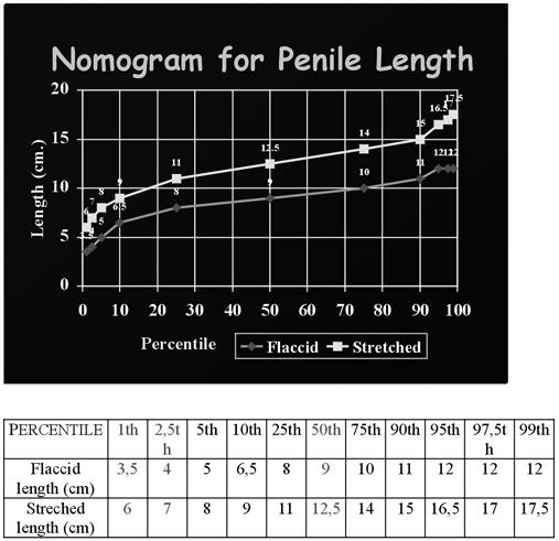 méretek átmérőjű péniszek