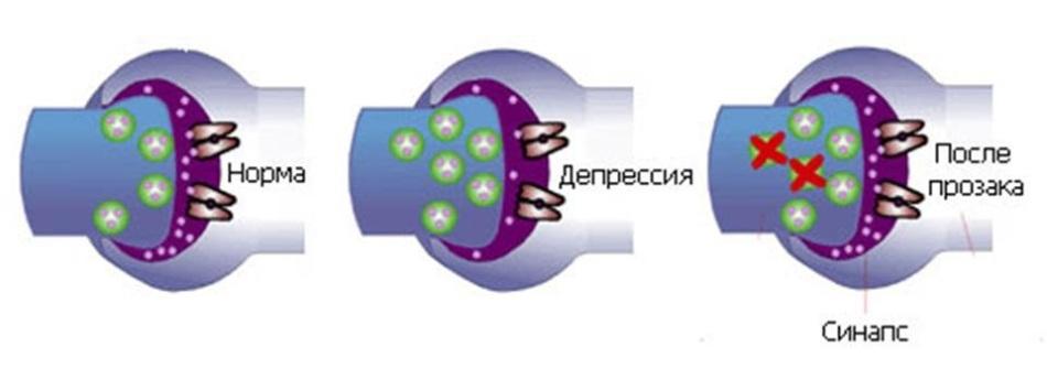 Fórum venerális és bőrbetegségek
