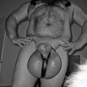 a pénisznél lógva